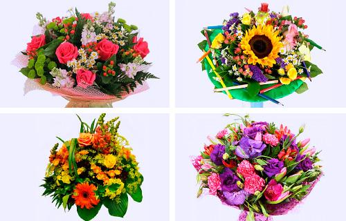 комнатный цветок с маленькими цветочками фото и названия