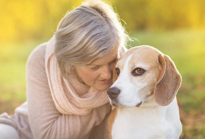 Собаки помогут распознать болезнь