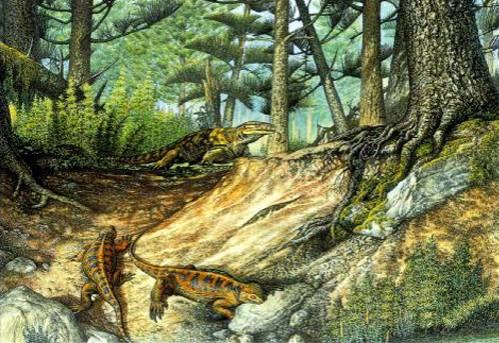 Кировчане смогут увидеть, как выглядела область 260 млн. лет назад
