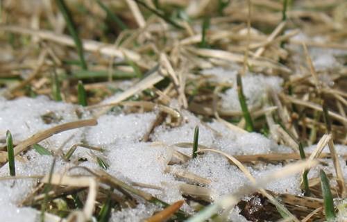 В Кирове обещают первый снег